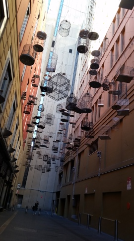 This photo was taken at Angel Place in Sydney, Australia. Recordings of birds that are now lost to the city play from above. It was peaceful while standing in this alleyway; one would never realize they were right next to one of the busiest streets in Sydney.